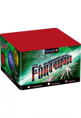 Batterie Fortuna, 100 Schuss